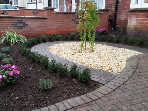 Newly planted small formal front garden